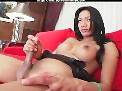 Rachel 2 shemale porn shemales tranny porn trannies ladyboy ladyboys ts tgi
