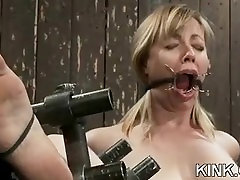 Pretty sexy girl knox suspended, dog play, bondage