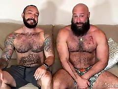 Horny Bears sex