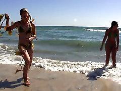 Bikini Beach Babes