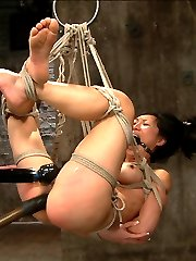 Welcome back tenacious Tia Ling. This bitch is one of the toughest I've encountered. With delight she is subjected to some of the most intense predicaments her body can take. In scene one, Tia is bound in an extremely limited duration spread and neck play predicament. What makes this position so tough is with the feet elevated and the hands pulling back at an angle, she has no back support and only her ab and thigh strength keep her in place. A crotch rope is added and soon she starts suspending herself to avoid the torments being administered, which is super hot and sexy. So much that the barrel gets taken away entirely. The problem for her at this point is if she lowers her body too much, she will asphyxiate...Second Tia is bound in a face up fold, kind of like an ebi but very open. Bitch however is wrapped in plastic like she was found in a dumpster and left to hang like a piece of meat. The plastic adds a new challenge. It dulls her senses and makes the cane on her ass feel very different. A hole is cut to expose only her pussy and the nice butt plug in her ass. All she gets is anal orgasms from a slick thick cock in her slut whole. The bitch loves it, lapping it up, and cumming more and more. Finally all of the plastic is removed and she is left to suffer in her bondage.Finally Tia is bound in a discipline position where she has to will herself to stay still. She is extremely ticklish and between tickling and the cane, really can't behave. She is switched onto her stomach into an open arm / reverse chicken wing hogtie. She looks far too comfortable and is switched into a very uncomfortable strappado and hoisted into the air in an intense 5 point hogtie suspension. Made to cum again and again she suffers and loves her bondage at the same time.