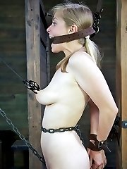 What's better than a sexy blonde in bondage? Let's start by adding a second one and watch where things go from there. We have Penny Pax and Sarah Jane Ceylon on hand, so we are going to find out. Penny has never been with another girl on camera before. Sarah Jane is going to have to show her how it's done. They are going to share one hell of a predicament today.