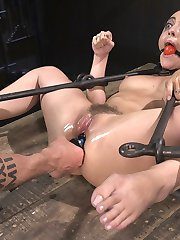 I have built a bit of a rapport with this little bratty slut. She likes to see what buttons she can push and how long I will allow it until I spank her little ass. I'm OK with that because she is willing to take the punishment for her bratty actions. Once in the bondage her pussy begins to drip with anticipation of the pain and suffering that is coming. The helplessness and thought of being tormented by the most sadistic mother fucker keeps this pain slut wanting more and coming back for it.