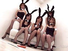 Japanse Bunny Orgie (Ongecensureerde JAV)