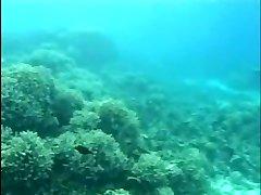 Aqua Romp 2 (Part 1 of 2)
