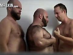 Bearded Bears and Bear Celebrities