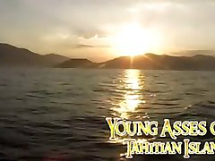 Young Asses of Tahtian Island