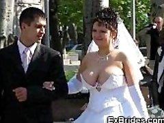 Real Noivas Mostrar Seus Bichanos!