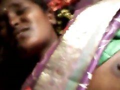 Бенгальский Буди 2