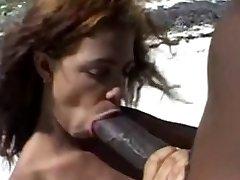 Velike smeđe bradavice &амп;амп;veliki smeđi pijetao na plaži
