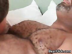 Gay zwarte beer heeft veel seks als hij zuigt part6