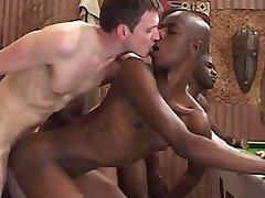 afrikanische Orgie