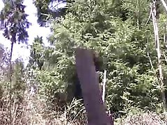 Insertion in my ass