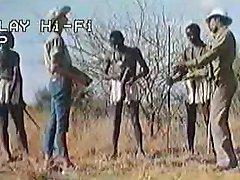 Afrikaanse enorme penissen !echte safari!