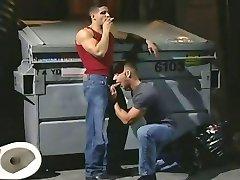 Ouvriers en rut