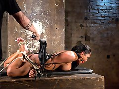 Maxine is new to Hogtied and is anxious to get started. We begin with her pussy getting...