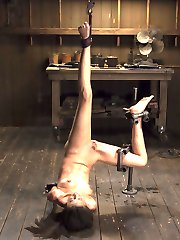 April Live shoot editedLyla starts in a standing spread eagle. A chain is used to inflict...