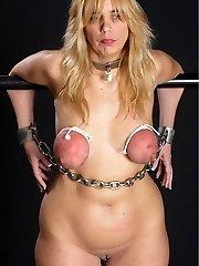 breast bondage tits torture