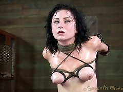 Veruca James is one of the best cock suckers in the world. She has no trouble deep throating all...