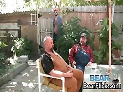 Boswell Bear Bud Stiffy and Budd Lawson part5