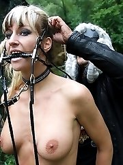 Extreme bullwhipped all over