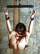 All BDSM