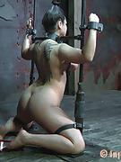 BDSM Inc
