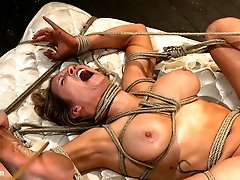Welcome to the second installment of the Hogtied feature movie series. These movies are real...