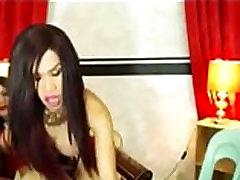 Horny Tranny Couple Having Sex - DickGirls.xyz